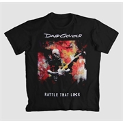 Camiseta David Gilmour - Rattle That Lock